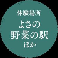 体験場所 よさの野菜の駅ほか