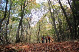 赤赤縦走路を歩く2日間 大江山タイムトライアル2019開催